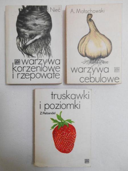 Rebandel Zofia/Małachowski Antoni/Nieć Helena - Truskawki i poziomki/Warzywa cebulowe/Warzywa korzeniowate i rzepowate