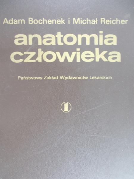 Bochenek A. - Anatomia człowieka tom III