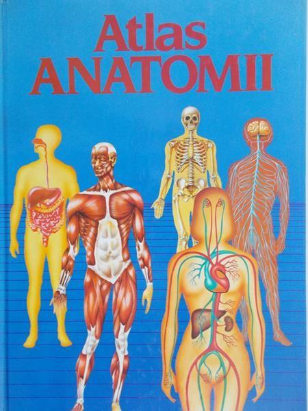 Olczak Iwona - Atlas anatomii