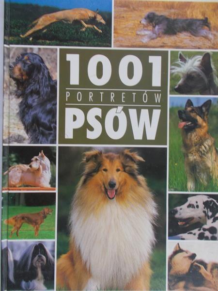 Boibessot Natalie (red) - 1001 portretów psów