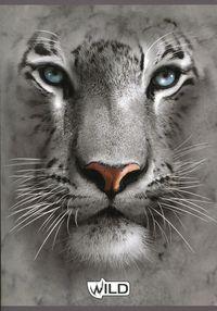 Zeszyt A5 Wild w linie 60 kartek Lew