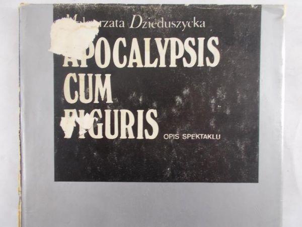 Dzieduszycka Małgorzata - Apocalypsis cum figuris