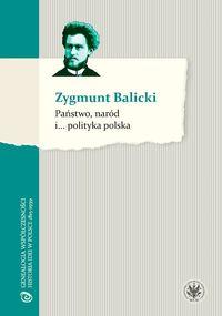 Państwo, naród i...… polityka polska
