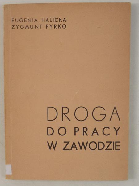 Halicka Eugenia, Pyrko Zygmunt - Droga do pracy w zawodzie