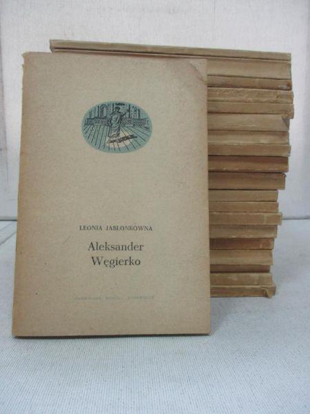 Zestaw 20 książek o tematyce monograficznej