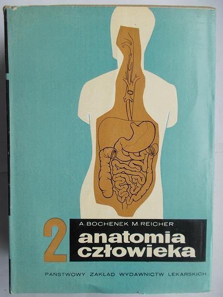 Anatomia człowieka 5