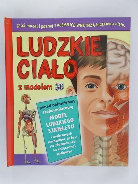 Ludzkie ciało z modelem 3D