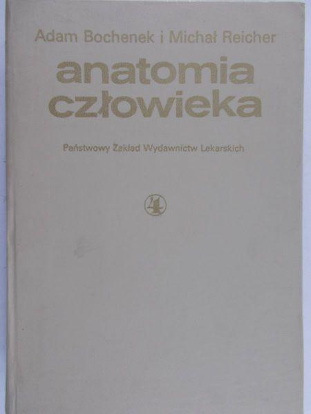 Bochenek Adam - Anatomia człowieka