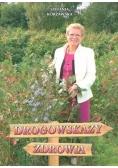 Drogowskazy zdrowia w.2017