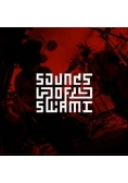 Sounds of Swami CD