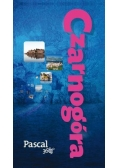 Pascal 360 stopni - Czarnogóra