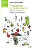 It's raining cats and dogs et autres expressions idiomatique