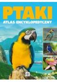 Ptaki atlas encyklopedyczy