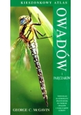 Kieszonkowy atlas owadów i pajęczaków