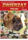 Atlas. Ilustrowana Encyklopedia Zwierząt Polski