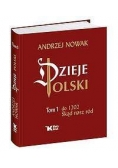 Dzieje Polski. Tom 1.