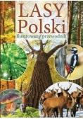 Lasy Polski. Ilustrowany przewodnik