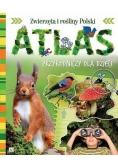 Atlas przyrodniczy dla dzieci TW