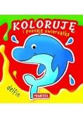 Koloruję i poznaję zwierzątka. Delfin