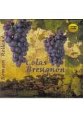 Colas Breugnon audiobook