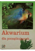 Akwarium dla początkujących