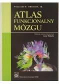 Atlas funkcjonalny mózgu