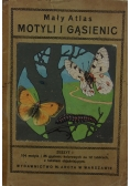 Mały atlas motyli i gąsienic, 1926r