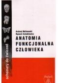 Anatomia funkcjonalna człowieka