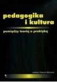 Pedagogika i kultura