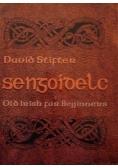 Sengoidelc. Old Irish for Beginners