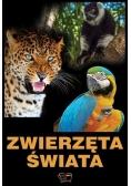Zwierzęta świata ARTI