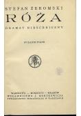 Róża, 1927r.