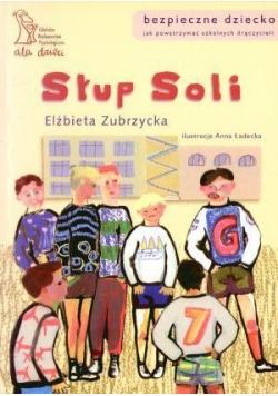 Słup soli - Elżbieta Zubrzycka