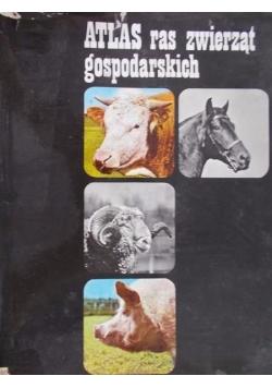 Atlas ras zwierząt gospodarskich