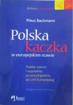 Polska kaczka w europejskim stawie