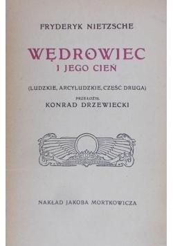 Wędrowiec i jego cień, 1909r.