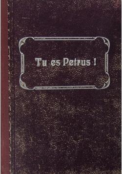 Tu es Petrus! Rozważania dla kapłanów, 1913 r.