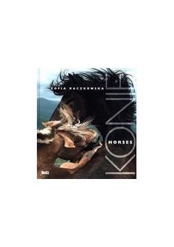 Konie. Horses
