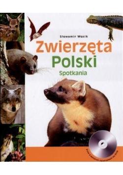 Zwierzęta Polski + CD. Spotkania