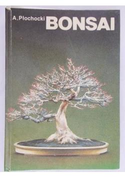 Bonsai-sztuka miniaturyzacji drzew i krzewów