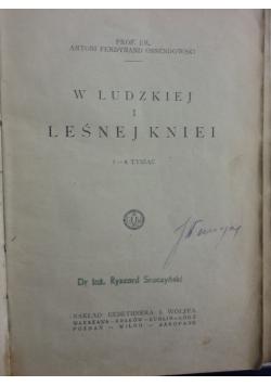W ludzkiej i leśnej kniei, 1923r.