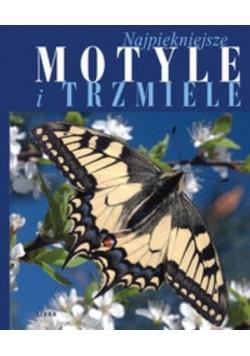 Najpiękniejsze motyle i trzmiele