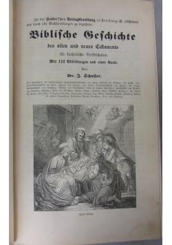 Biblische Geschichte alter und neuer Testaments, 1861r.