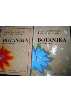 Botanika Morfologia, Botanika Systematyka
