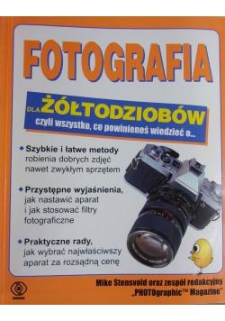 Fotografia dla żółtodziobów czyli wszystko, co powinieneś wiedzieć o ...