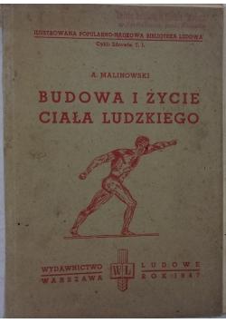 Budowa i życie ciała ludzkiego, 1947 r.