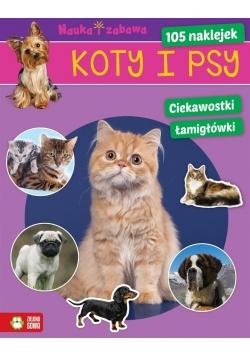 Nauka i zabawa. Koty i psy