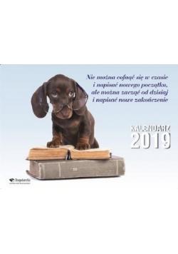 Kalendarz 2019 Ścienny BOGULANDIA