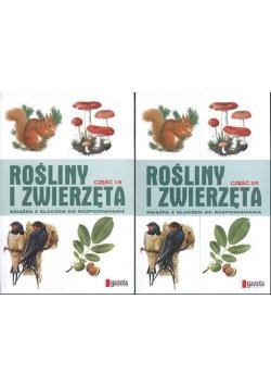 Rośliny i zwierzęta , zestaw 2 książek
