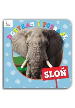 Dotykam i Poznaję. Słoń